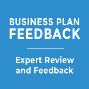 Business Plan Expert Review and Feedback
